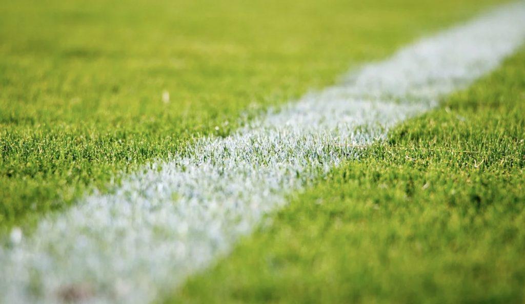 Mecze za darmo. Rennes - Nantes, Hertha - Schalke. Streamy 31 stycznia (piątek)